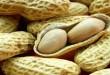 peanut-in-hindi-1-633x319