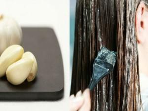 20-1434779390-garlic-dye